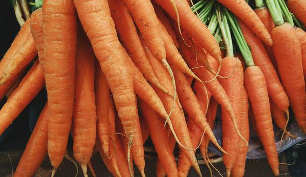 Korzystanie z nasion warzyw